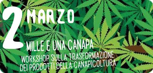 mille_e_una_canapa_sito